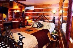 Wilderness Suite